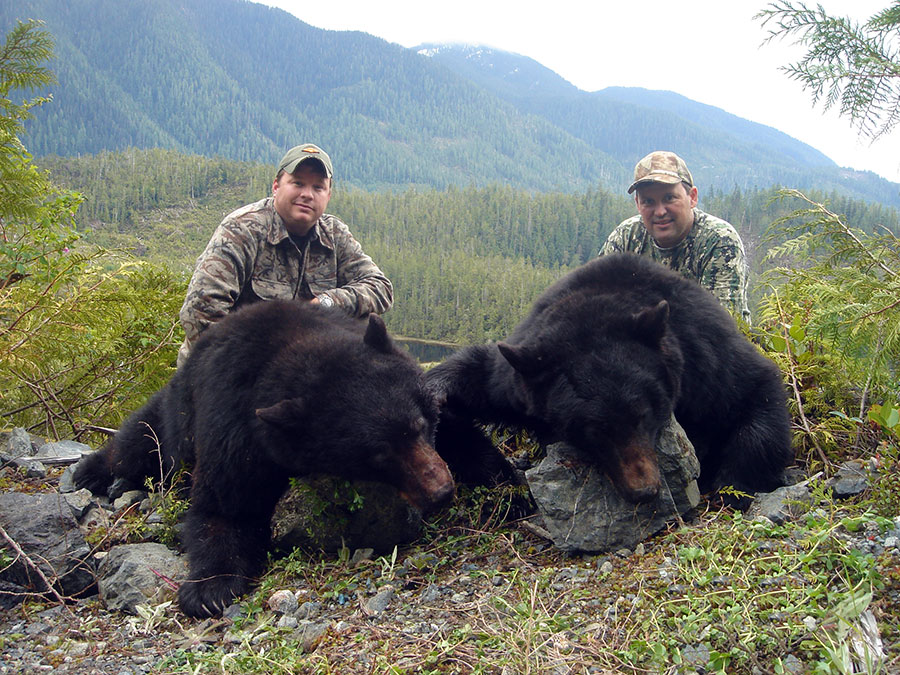 Hunt for Coastal Black Bear