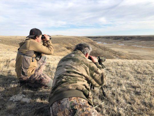 Alberta Deer Hunts